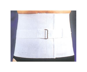 Andover Eesibrace Twill Spinal Support Belt
